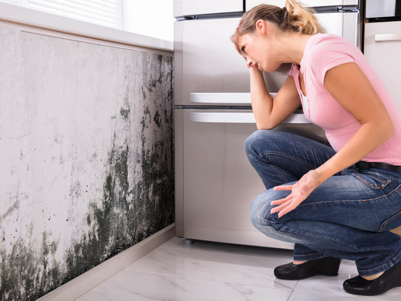 Do you have a damp problem in the house?