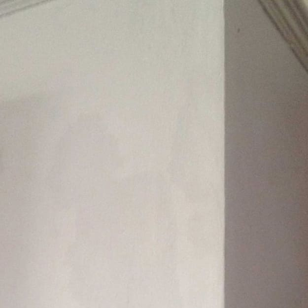 Penetrating damp in the wall of a house