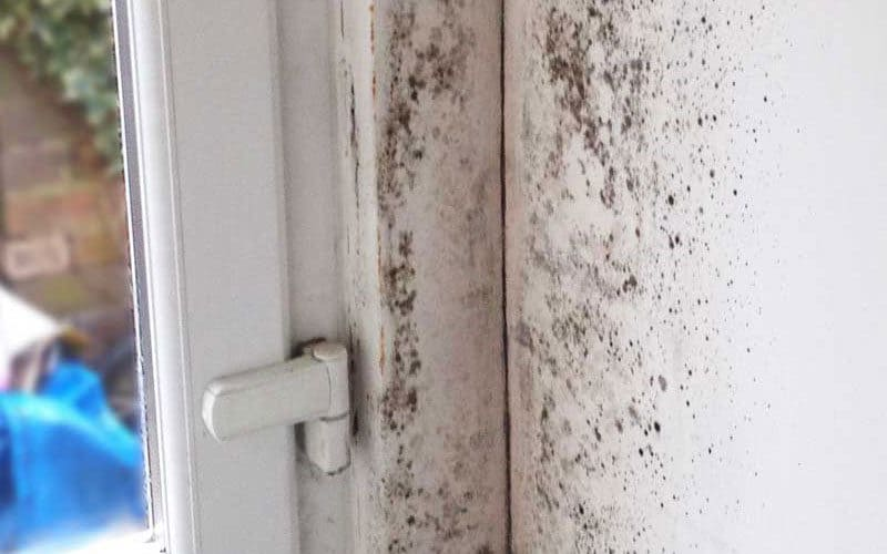 Damp inside your house