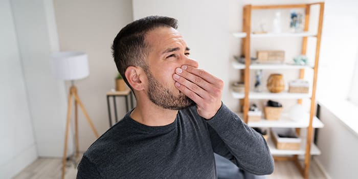 Blog - Musty odor in the house due to damp problems