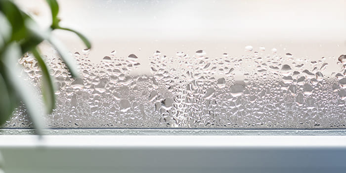 Blog - What are ideal humidity levels to maintain in the house?