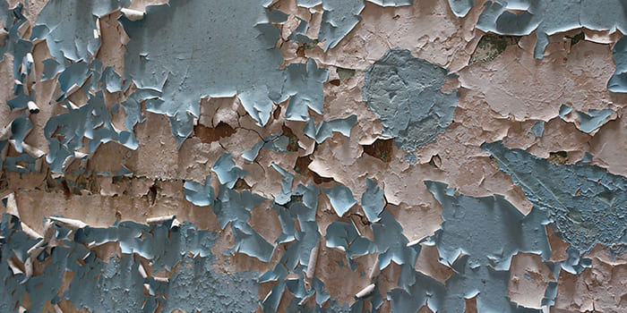 Blog - The external wall looks damp