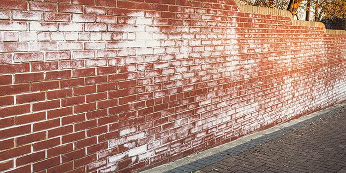 Blog - Salts on the wall